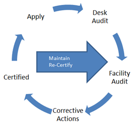 Auditing Diagram.PNG